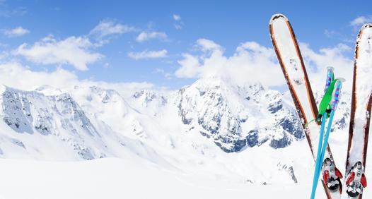 Omslagsbild för Åka Skidor