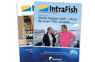 Intrafish Magazine