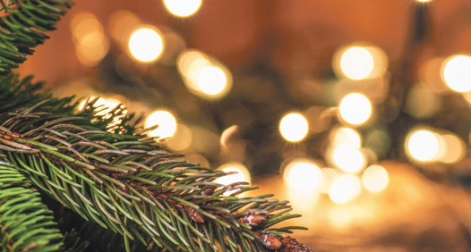 Fokus Joyeuses fêtess omslagsbilde