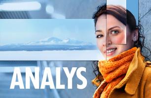 Analays