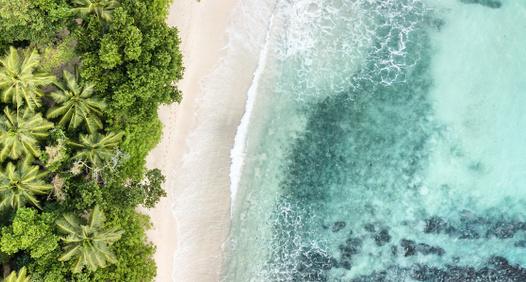 Omslagsbild för Fokus Travel & Discover