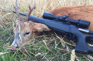 Lansere ny rifle