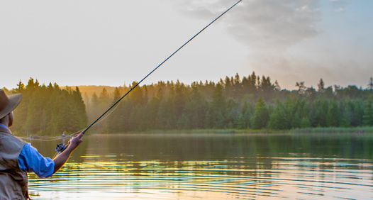 Omslagsbild för Allt Om Flugfiske