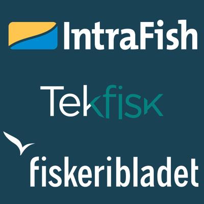 Fiskeribladet // Intrafish // Tekfisk's logotype