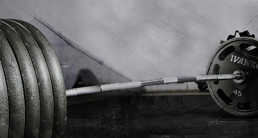 Omslagsbild för Muscles.se