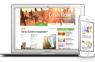 Native: Cashflow med Intrum