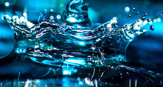 Fokus Water's cover image