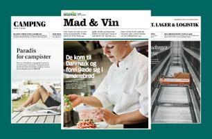Jyllands-Posten's theme publications 2019
