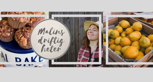 Omslagsbild för Malin Vesterback
