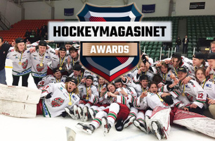 Hockeymagasinet Awards
