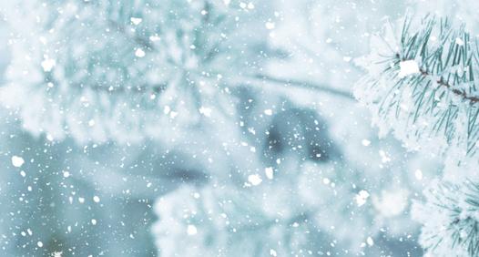 Omslagsbild för Fokus Winterguide