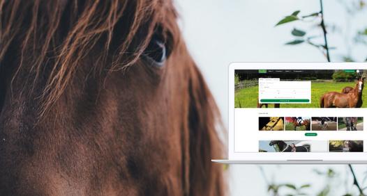 Omslagsbild för Hästnet