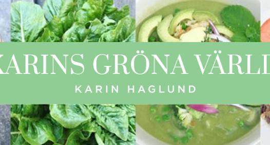 Omslagsbild för Karins Gröna Värld