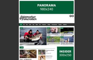 Webbsidan