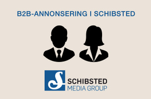 B2B-produkter i Schibsted