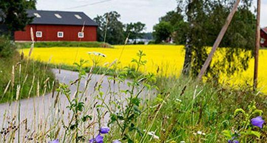 Västmanlands Nyheter's cover image