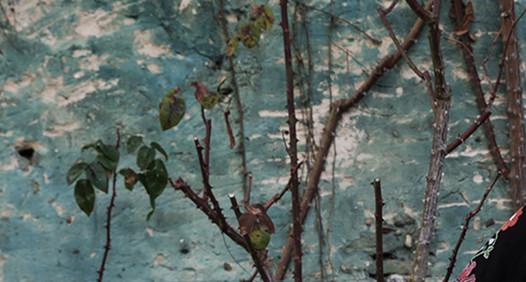 Annette Nordstrøm's cover image