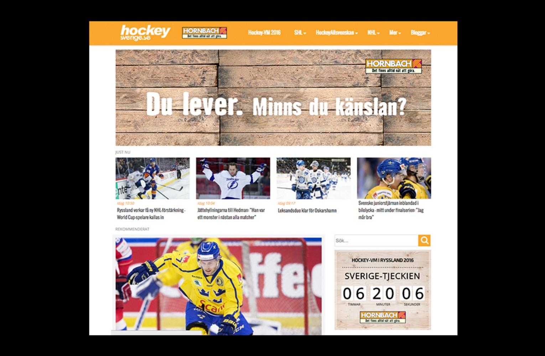 Sponsorskap Hockeysverige
