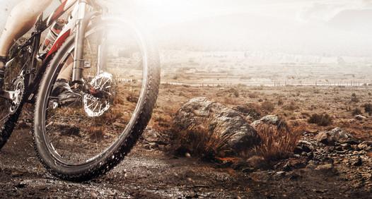 Allt om MTB's cover image