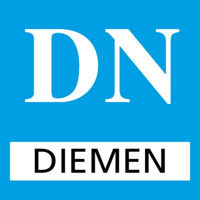 DiemerNieuws's logotype