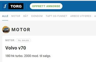 Torg - Priser fra 100,-