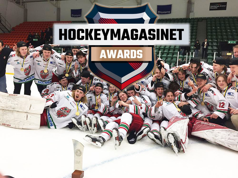 Hockeymagasinet Awards