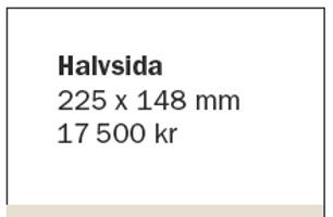 Halvsida
