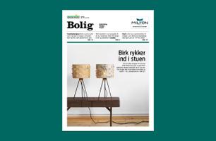Bolig (Sunday)