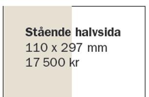 Halvsida (stående)