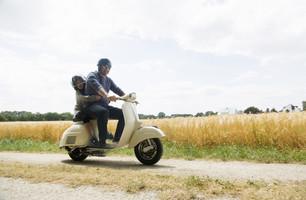 Scootere og knallerter